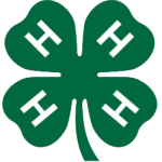 4H County Competitions