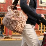 The Diaper Bag For A Cool Mom