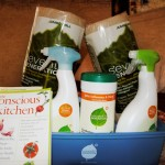 "Seventh Generation ""Disinfecting Cleaning Kit"" Review and Giveaway!"