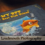 My Best Fish Friend, Review and Giveaway!