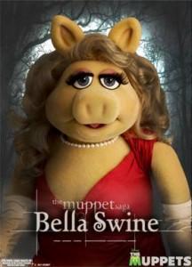 The Muppet Saga…