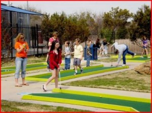 Zone Action Park Coupon!  Lewisville, Texas!