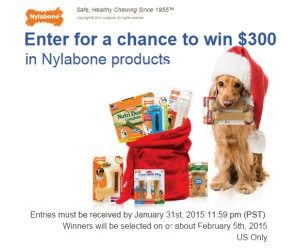 Top 5 Holiday Gifts for Your Dog and a Nylabone $300 Holiday Sweepstakes