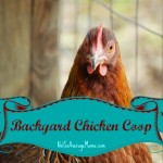 Free Chicken Coop Instructions