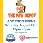PDQ Frisco Hosts Dog Adoption Event
