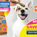 Nylabone Coupons, Nutri Dent 3 Point Dental Chews!