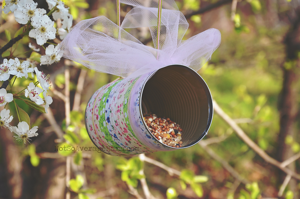 How to make a simple bird feeder not so average mama for Bird seed glue recipe