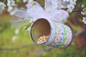 How to Make a Simple Bird Feeder