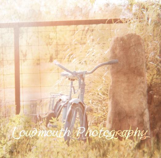 vintagebikewmsm