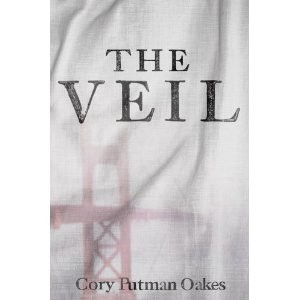 The Veil, a Novel for Young Adults