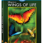 Wings of Life on BLU-RAY! Free 25-page Educational Guide! #Homeschool