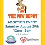 PDQ Frisco Hosts Dog Adoption Event